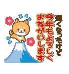 【戌年】柴犬のお正月&日常2018(個別スタンプ:19)