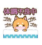 【戌年】柴犬のお正月&日常2018(個別スタンプ:35)