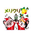 シャム猫ちゃん! クリスマスバージョン♪(個別スタンプ:01)