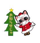シャム猫ちゃん! クリスマスバージョン♪(個別スタンプ:07)