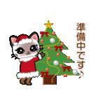 シャム猫ちゃん! クリスマスバージョン♪(個別スタンプ:13)