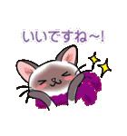 シャム猫ちゃん! クリスマスバージョン♪(個別スタンプ:23)