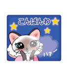 シャム猫ちゃん! クリスマスバージョン♪(個別スタンプ:27)