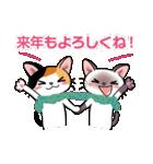 シャム猫ちゃん! クリスマスバージョン♪(個別スタンプ:38)
