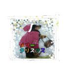 【X'mas & お正月】おとぼけダックス(個別スタンプ:09)