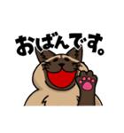 北海道育ちのタイちゃん。(個別スタンプ:01)