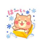 しばぽよのお正月【戌年】(個別スタンプ:19)