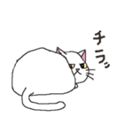猫だけ(個別スタンプ:12)