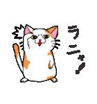猫だけ(個別スタンプ:17)