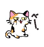 猫だけ(個別スタンプ:18)