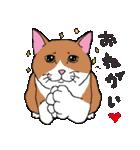 猫だけ(個別スタンプ:19)