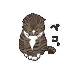 猫だけ(個別スタンプ:23)