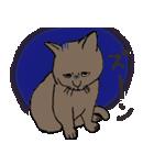 猫だけ(個別スタンプ:32)
