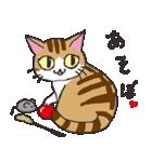 猫だけ(個別スタンプ:34)