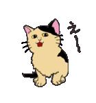 猫だけ(個別スタンプ:39)