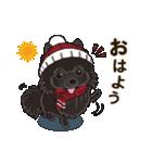 気軽にスタンプ 黒ポメラニアン 冬編(個別スタンプ:01)