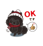 気軽にスタンプ 黒ポメラニアン 冬編(個別スタンプ:03)