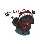 気軽にスタンプ 黒ポメラニアン 冬編(個別スタンプ:04)