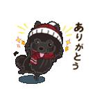 気軽にスタンプ 黒ポメラニアン 冬編(個別スタンプ:07)