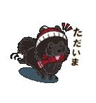 気軽にスタンプ 黒ポメラニアン 冬編(個別スタンプ:11)