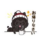 気軽にスタンプ 黒ポメラニアン 冬編(個別スタンプ:12)