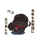 気軽にスタンプ 黒ポメラニアン 冬編(個別スタンプ:21)