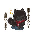 気軽にスタンプ 黒ポメラニアン 冬編(個別スタンプ:22)
