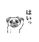 動く!哀愁パグ 3(個別スタンプ:01)