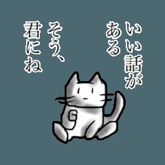 おしゃべりな白猫