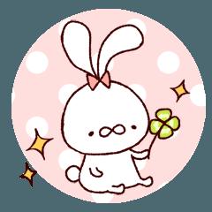 もっちりウサギ 1