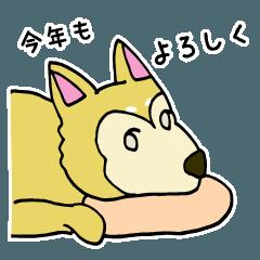 2017干支 戌年 柴犬 イヌのスタンプ