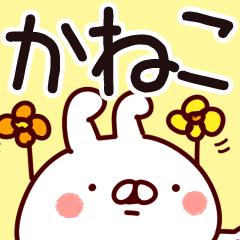 【かねこ/金子】専用