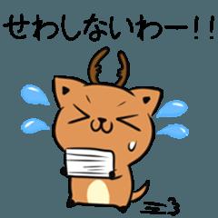 奈良弁の鹿とねこ2