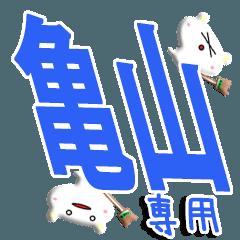 ★亀山さん専用★(亀山一択)