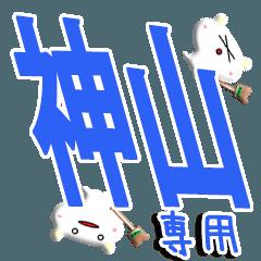 ★神山さん専用★(神山一択)