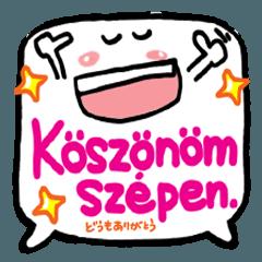 感謝セット(ハンガリー)3