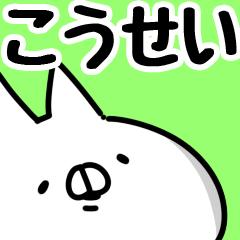 【こうせい】専用
