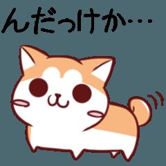 秋田弁のわんことフェレット
