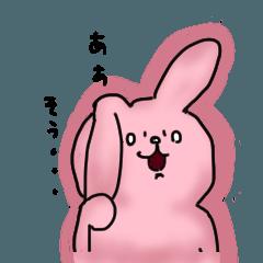 日常使いウサギ