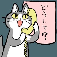 こねこ電話相談