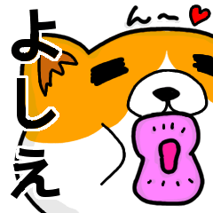 [LINEスタンプ] よしえより愛を込めて(名前スタンプ・猫)