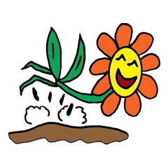 Sunday's Flower Power 2