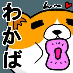 [LINEスタンプ] わかばより愛を込めて(名前スタンプ・猫)