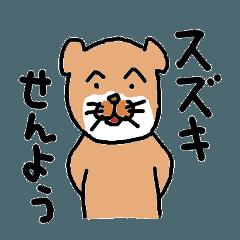 鈴木さんちのネコ。