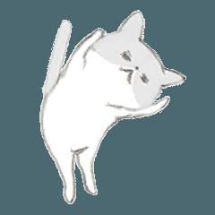 [LINEスタンプ] いつもゆるい猫