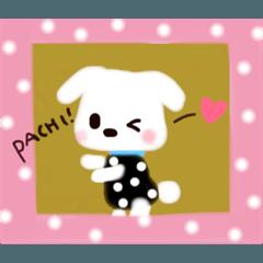 [LINEスタンプ] 子犬のフランソワ♡【可愛すぎるワンコ】