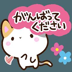 [LINEスタンプ] ちょっぴり弱気な三毛猫