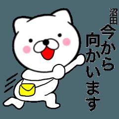 【沼田】が使う主婦が作ったデカ文字ネコ
