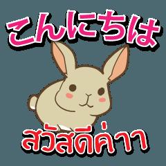 毎日楽しめる ウサギ 日本語タイ語
