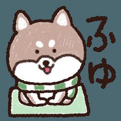 ほっこりする柴犬の【冬】
